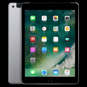 iPad 128GB 4G Gray