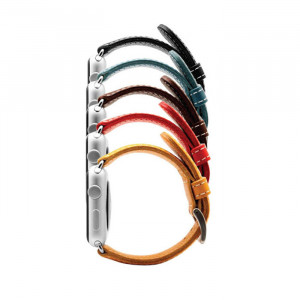 SLG D6 Strap Apple Watch 42 full color