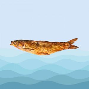 ماهی دودی