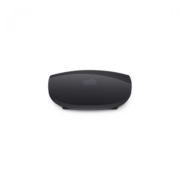 Magic Mouse 2 gray